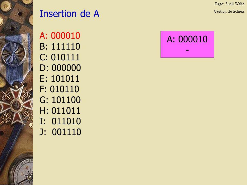Page: 14-Ali Walid Gestion de fichiers Insertion de A.