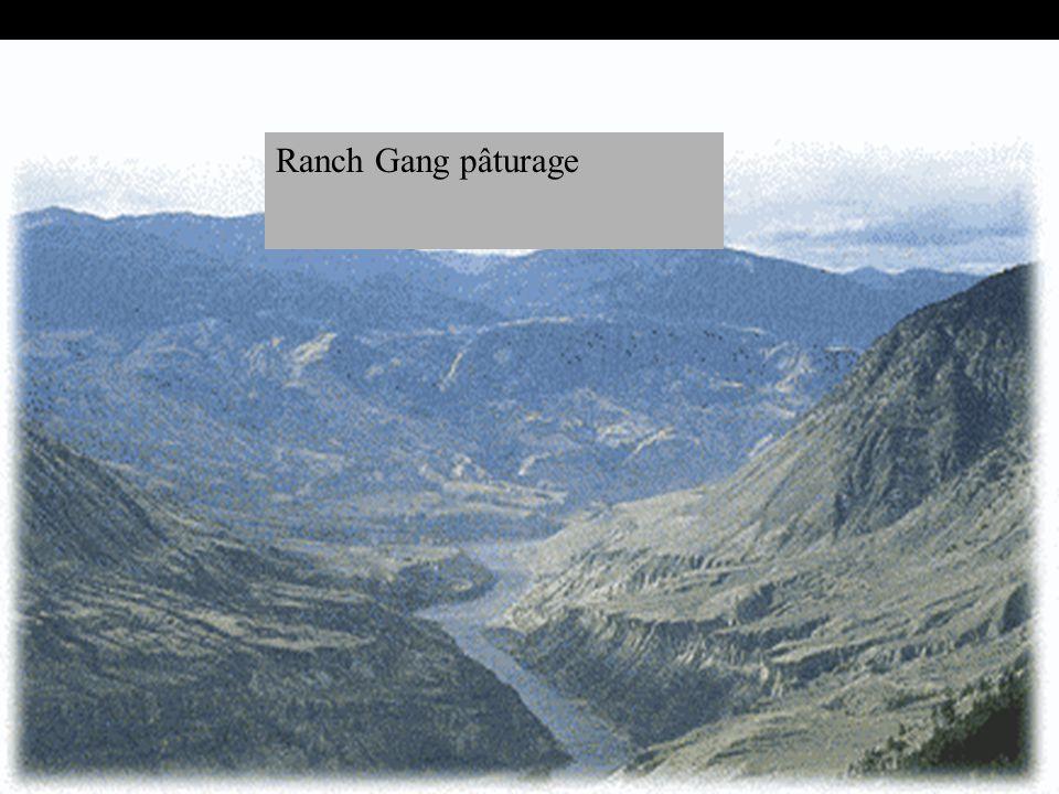 Étapes suivantes Faites la synthèse de toutes les actions que l assistance doit prendre Faites la synthèse des actions qui vous ont été assignées Ranch Gang pâturage