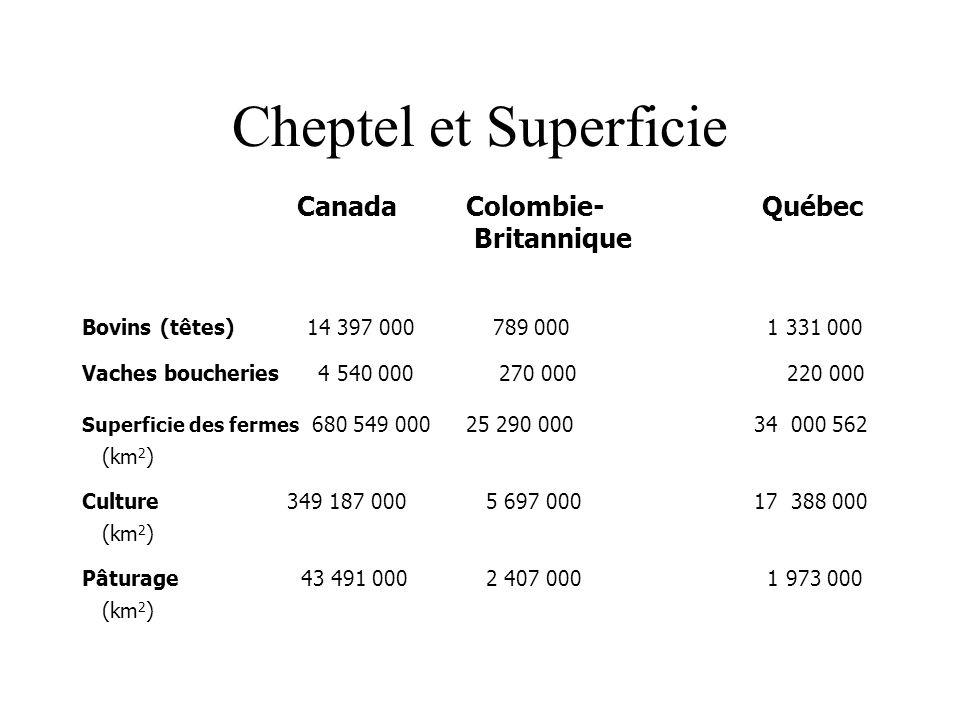 Cheptel et Superficie CanadaColombie- Québec Britannique Bovins (têtes) 14 397 000 789 000 1 331 000 Vaches boucheries 4 540 000 270 000 220 000 Superficie des fermes 680 549 00025 290 00034 000 562 (km 2 ) Culture 349 187 000 5 697 00017 388 000 (km 2 ) Pâturage 43 491 000 2 407 000 1 973 000 (km 2 )