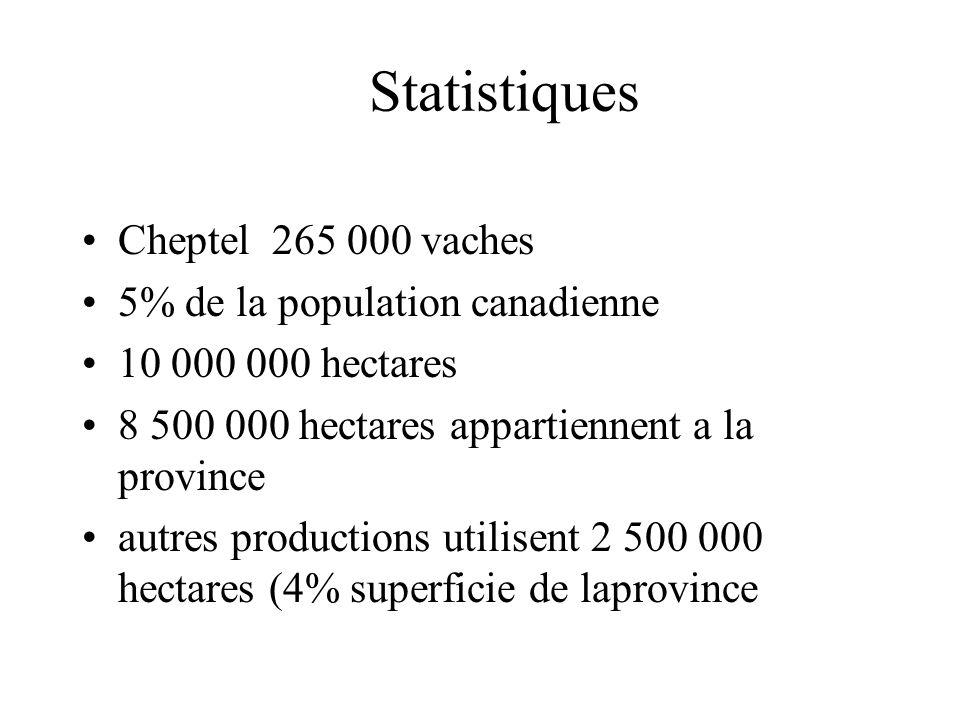 Statistiques Cheptel 265 000 vaches 5% de la population canadienne 10 000 000 hectares 8 500 000 hectares appartiennent a la province autres productions utilisent 2 500 000 hectares (4% superficie de laprovince