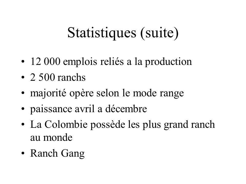 Statistiques (suite) 12 000 emplois reliés a la production 2 500 ranchs majorité opère selon le mode range paissance avril a décembre La Colombie possède les plus grand ranch au monde Ranch Gang