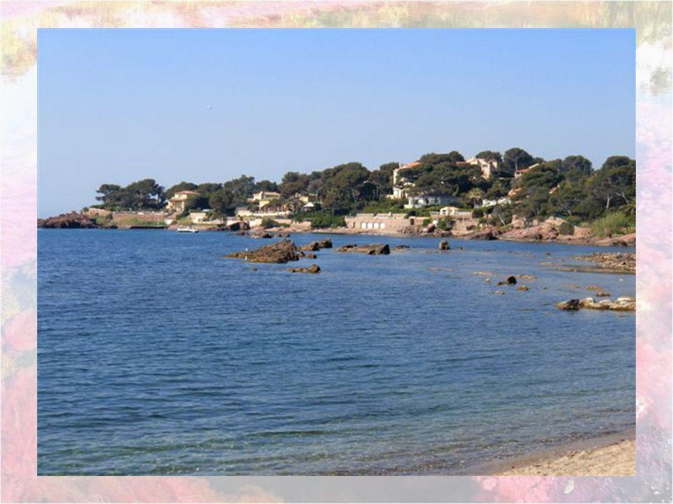 Cest la plage la plus près de la Résidence