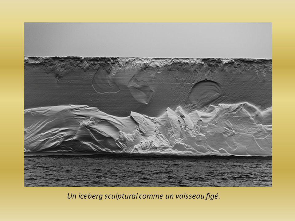 Au Pole Nord, la nuit noire provoque une obscurité presque parfaite les lumières scintillantes contrastent cette ambiance.