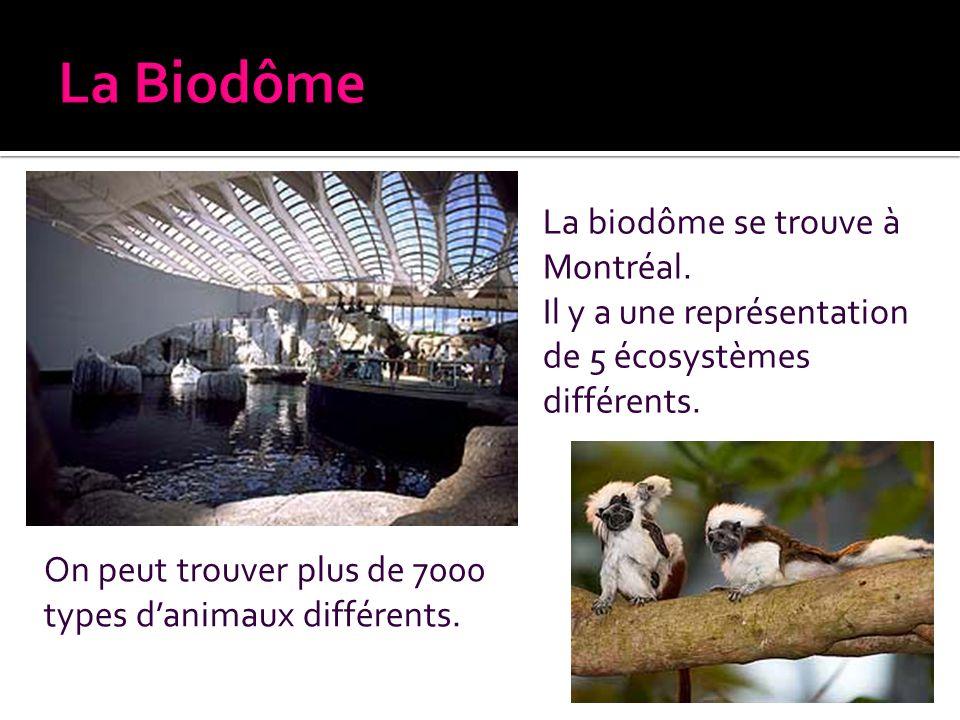 La biodôme se trouve à Montréal. Il y a une représentation de 5 écosystèmes différents. On peut trouver plus de 7000 types danimaux différents.