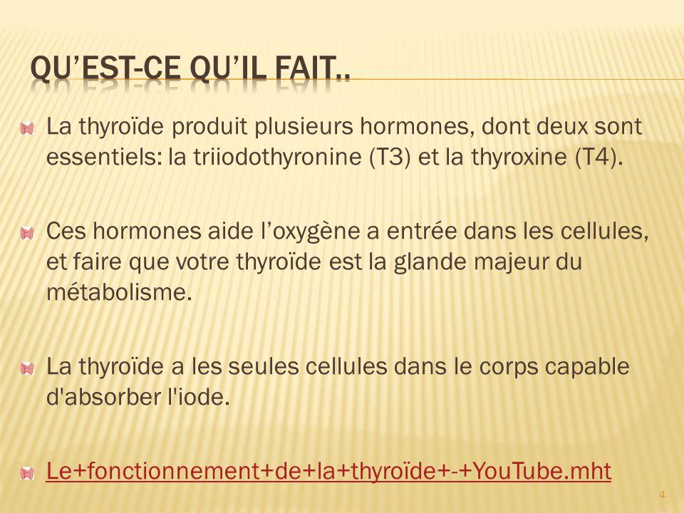 La thyroïde convertissent l iode ou tyrosine dans les hormones T3 et T4.