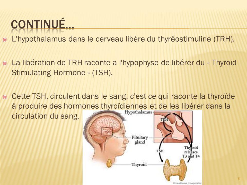 Un faible pourcentage des nodules thyroïdiens sont cancéreuses.