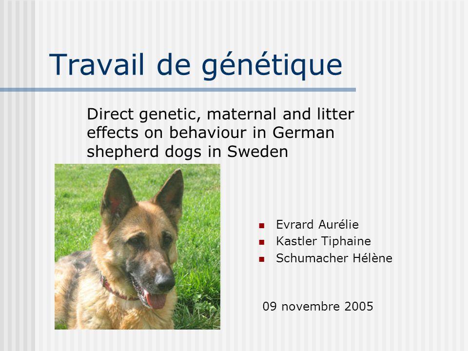 Introduction Etude de la variation génétique des traits de comportement chez le Berger allemand Influence maternelle Génétique Environnement permanent Influence de la portée