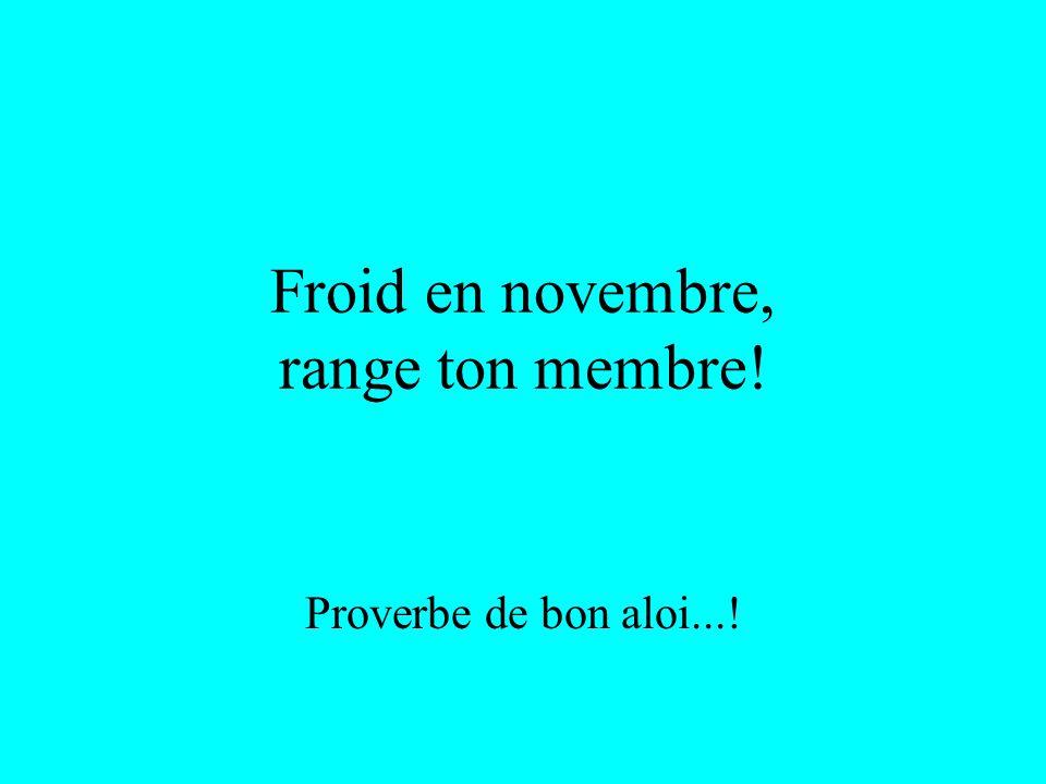 Froid en novembre, range ton membre! Proverbe de bon aloi...!
