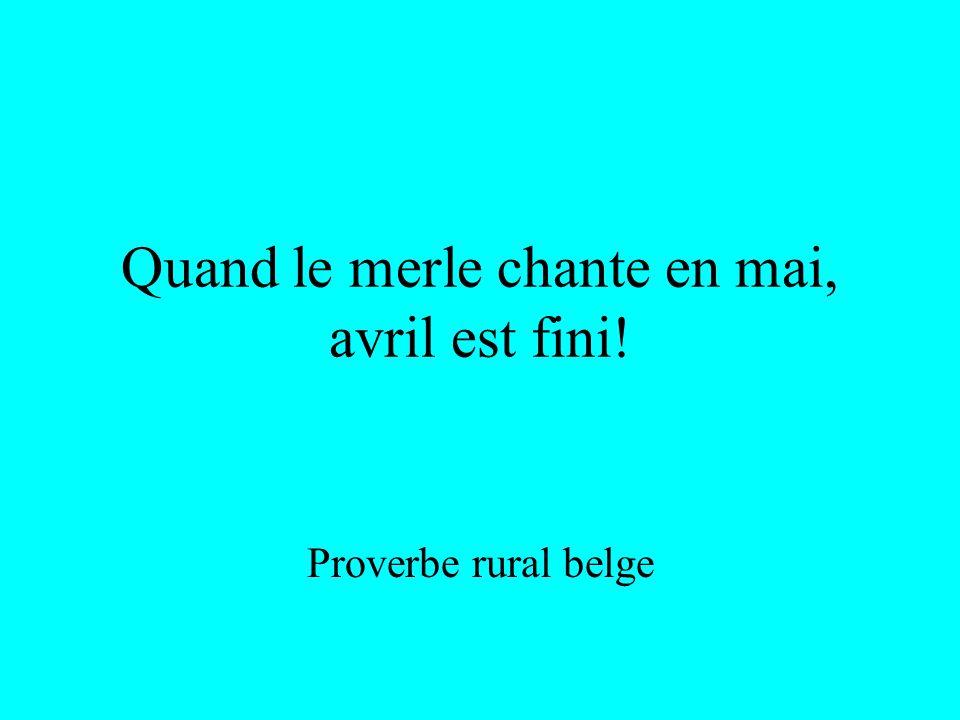 Proverbe rural Pingouins dans les champs, hivers méchant!