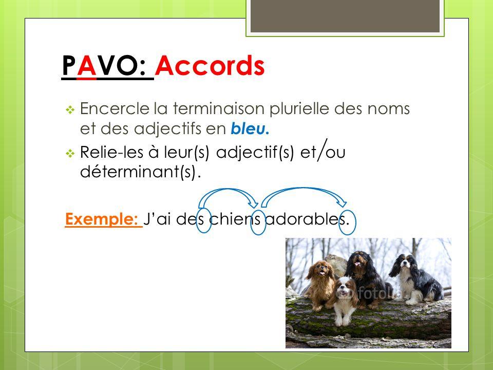 PAVO: Accords Encercle la terminaison plurielle des noms et des adjectifs en bleu. Relie-les à leur(s) adjectif(s) et ou déterminant(s). Exemple: Jai