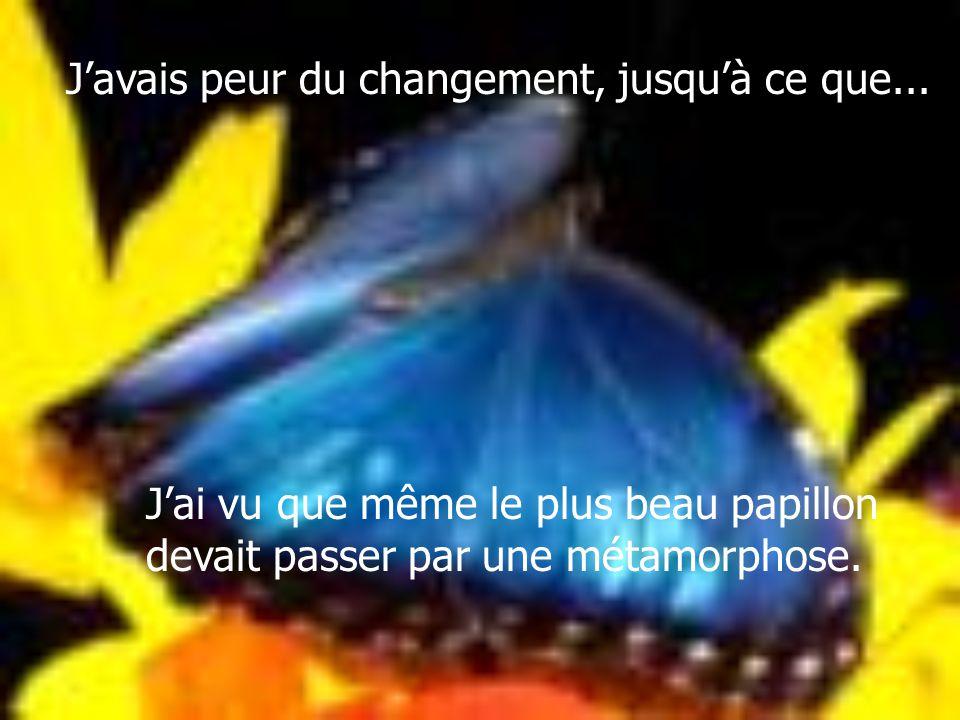 Javais peur du changement, jusquà ce que... Jai vu que même le plus beau papillon devait passer par une métamorphose.