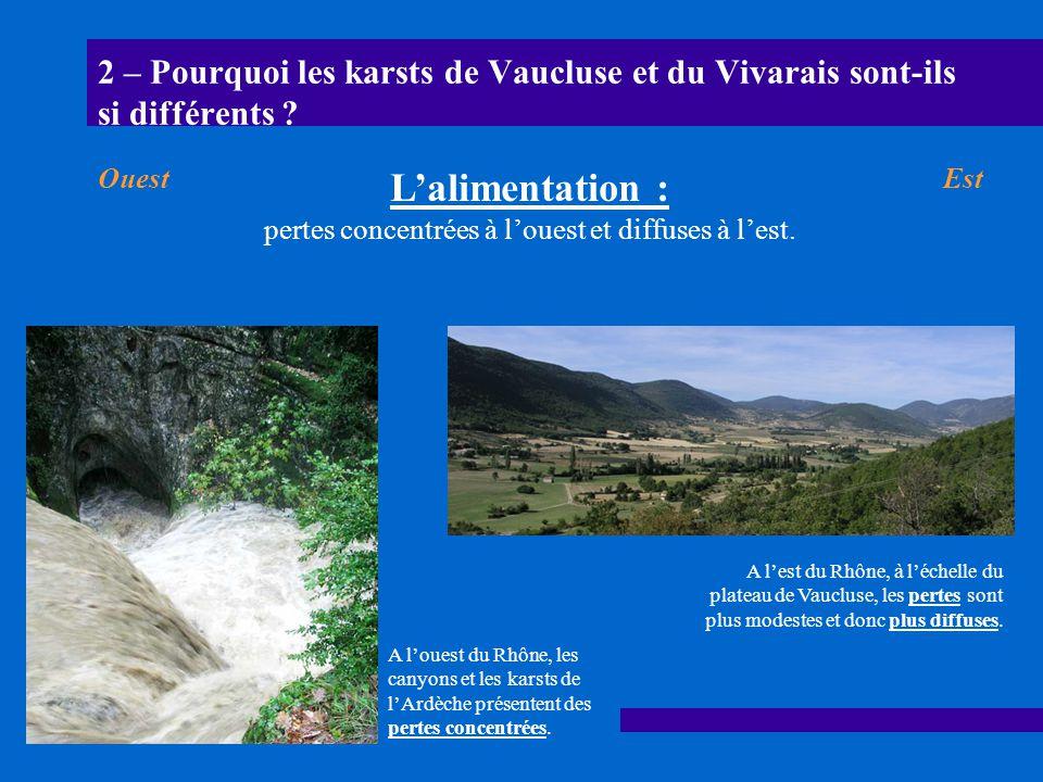 2 – Pourquoi les karsts de Vaucluse et du Vivarais sont-ils si différents ? A louest du Rhône, les canyons et les karsts de lArdèche présentent des pe