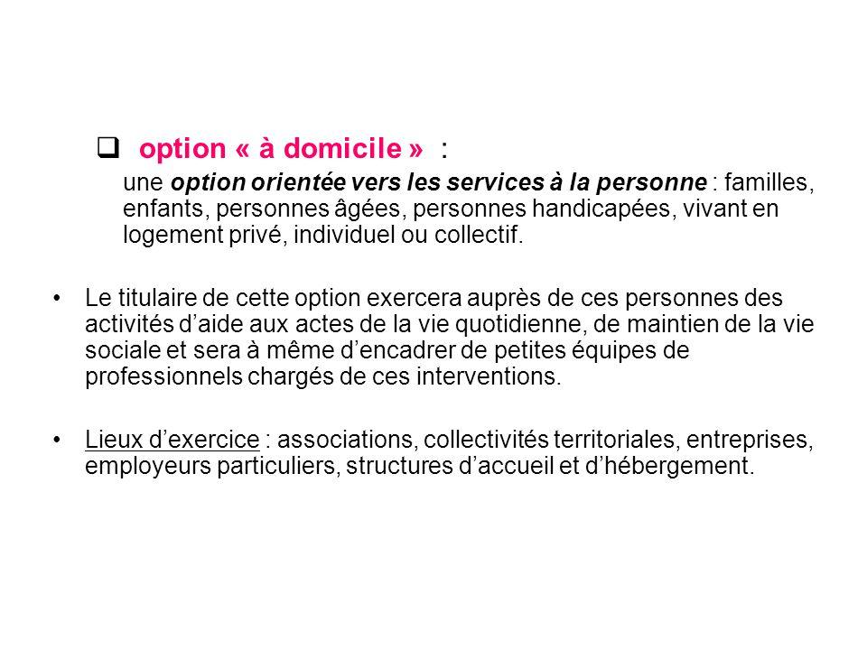 option « à domicile » : une option orientée vers les services à la personne : familles, enfants, personnes âgées, personnes handicapées, vivant en logement privé, individuel ou collectif.