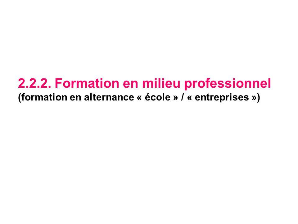 2.2.2. Formation en milieu professionnel (formation en alternance « école » / « entreprises »)