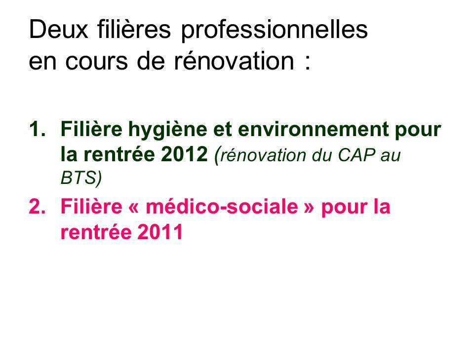 Deux filières professionnelles en cours de rénovation : 1.Filière hygiène et environnement pour la rentrée 2012 ( rénovation du CAP au BTS) 2.Filière « médico-sociale » pour la rentrée 2011