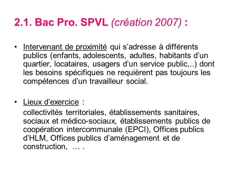2.1.Bac Pro.