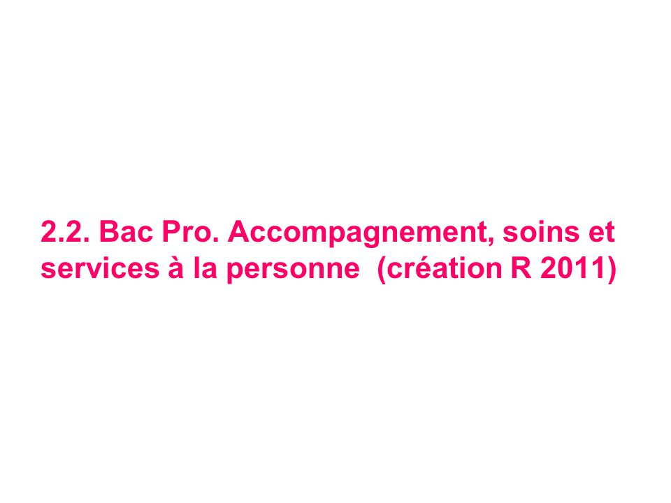 2.2. Bac Pro. Accompagnement, soins et services à la personne (création R 2011)