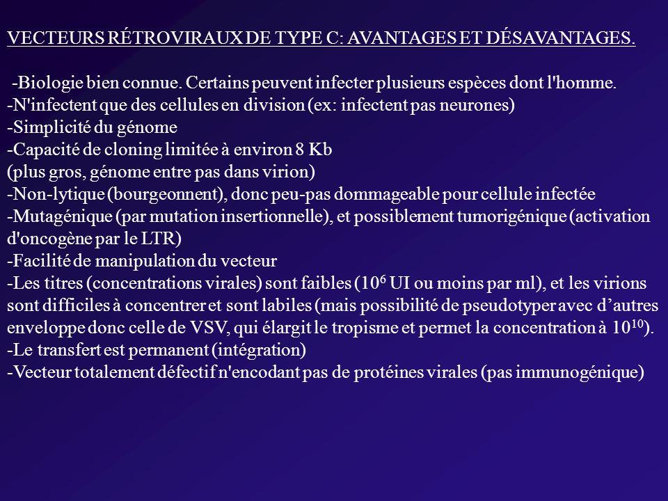 VECTEURS RÉTROVIRAUX DE TYPE C: AVANTAGES ET DÉSAVANTAGES.