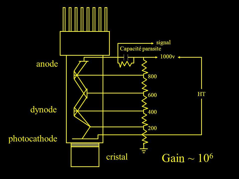 HT 1000v 800 600 400 200 signal Capacité parasite anode dynode photocathode cristal Gain ~ 10 6