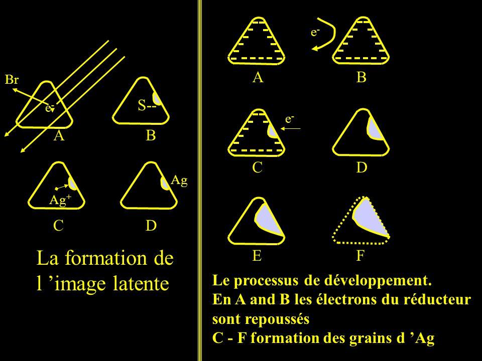 Le processus de développement.