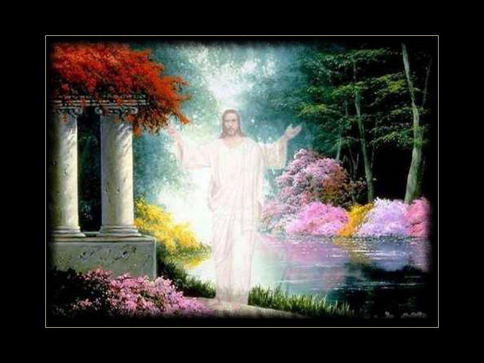Mon Dieu donne-moi la sérénité, daccepter toutes les choses que je ne peux changer. Donne-moi le courage de changer les choses que je peux, Et la sage