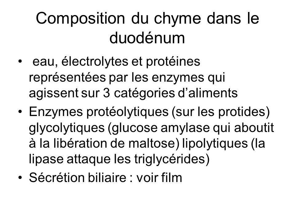 Composition du chyme dans le duodénum eau, électrolytes et protéines représentées par les enzymes qui agissent sur 3 catégories daliments Enzymes protéolytiques (sur les protides) glycolytiques (glucose amylase qui aboutit à la libération de maltose) lipolytiques (la lipase attaque les triglycérides) Sécrétion biliaire : voir film