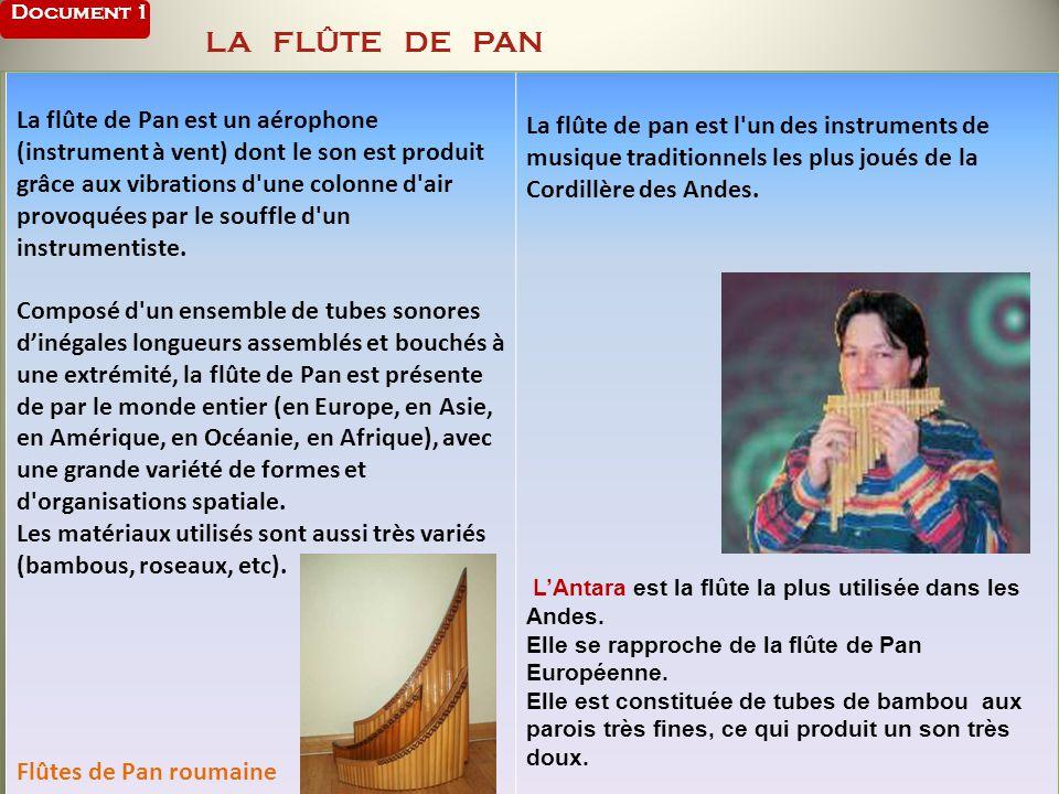 Document 1 LA FLÛTE DE PAN La flûte de Pan est un aérophone (instrument à vent) dont le son est produit grâce aux vibrations d'une colonne d'air provo
