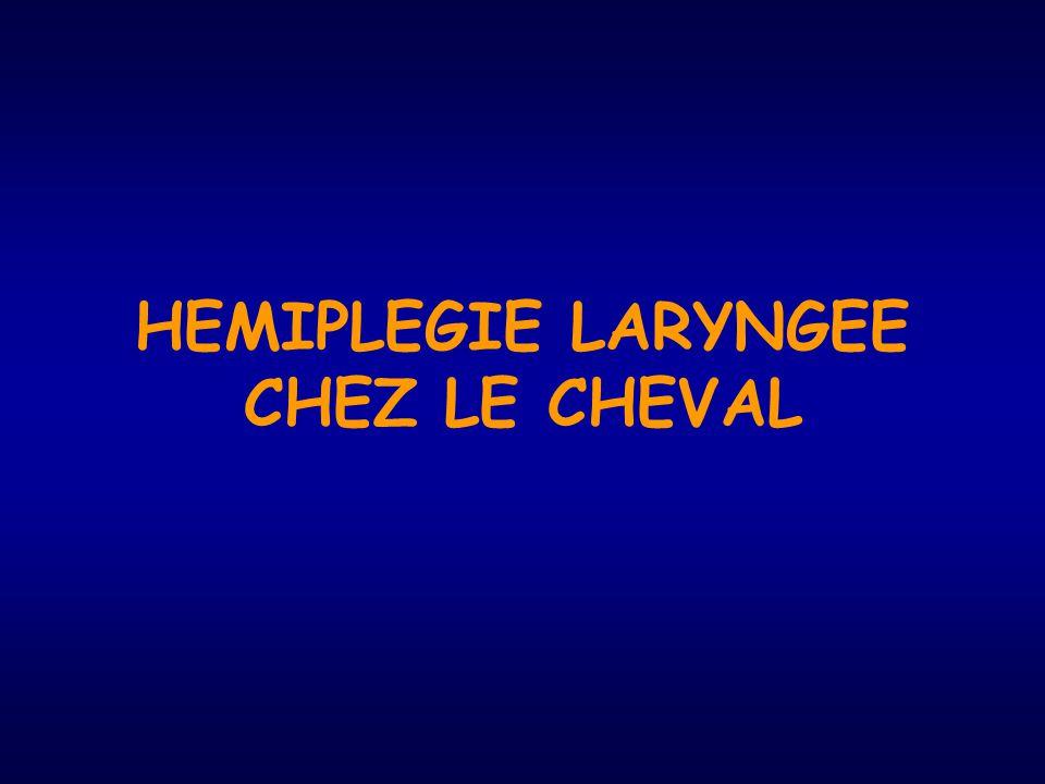 HEMIPLEGIE LARYNGEE CHEZ LE CHEVAL
