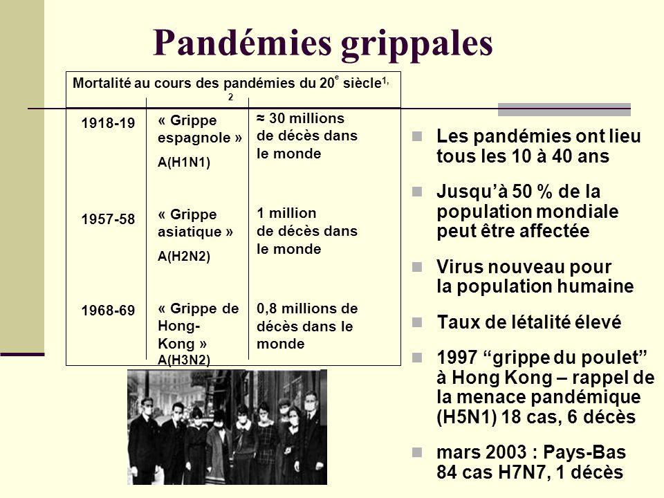 Pandémies grippales Les pandémies ont lieu tous les 10 à 40 ans Jusquà 50 % de la population mondiale peut être affectée Virus nouveau pour la population humaine Taux de létalité élevé 1997 grippe du poulet à Hong Kong – rappel de la menace pandémique (H5N1) 18 cas, 6 décès mars 2003 : Pays-Bas 84 cas H7N7, 1 décès Mortalité au cours des pandémies du 20 e siècle 1, 2 1918-19 1957-58 1968-69 « Grippe espagnole » A(H1N1) « Grippe asiatique » A(H2N2) « Grippe de Hong- Kong » A(H3N2) 30 millions de décès dans le monde 1 million de décès dans le monde 0,8 millions de décès dans le monde