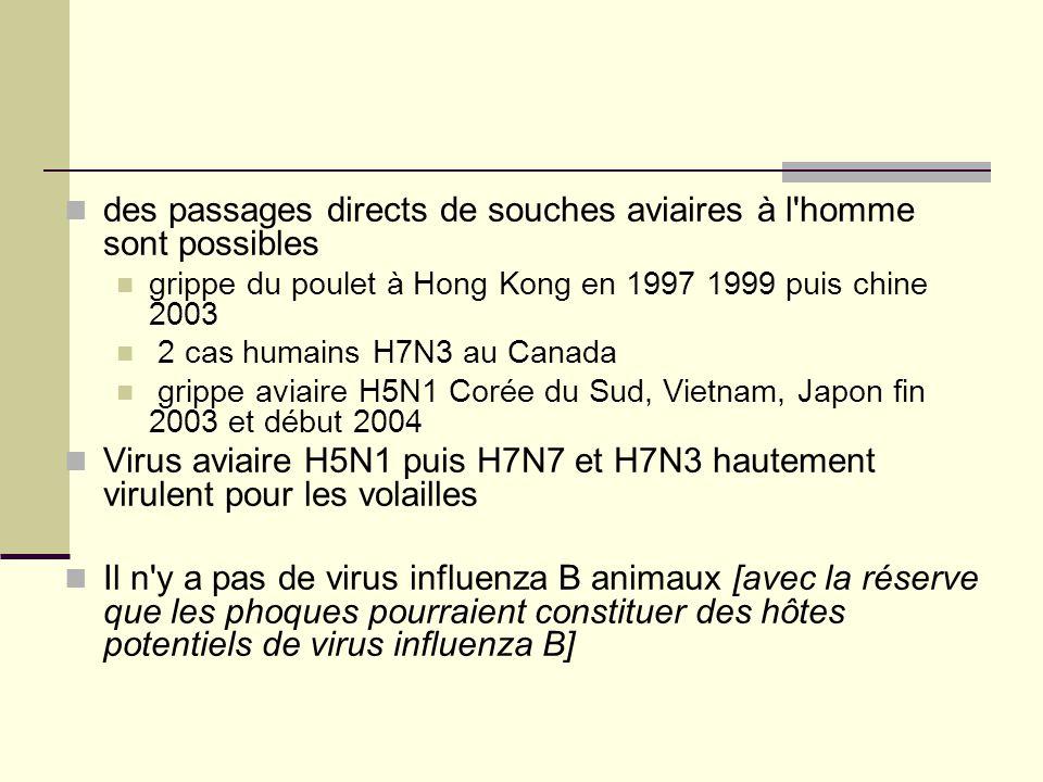 des passages directs de souches aviaires à l homme sont possibles grippe du poulet à Hong Kong en 1997 1999 puis chine 2003 2 cas humains H7N3 au Canada grippe aviaire H5N1 Corée du Sud, Vietnam, Japon fin 2003 et début 2004 Virus aviaire H5N1 puis H7N7 et H7N3 hautement virulent pour les volailles Il n y a pas de virus influenza B animaux [avec la réserve que les phoques pourraient constituer des hôtes potentiels de virus influenza B]