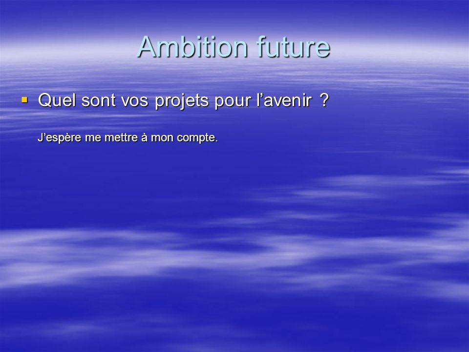 Ambition future Quel sont vos projets pour lavenir ? Quel sont vos projets pour lavenir ? Jespère me mettre à mon compte.