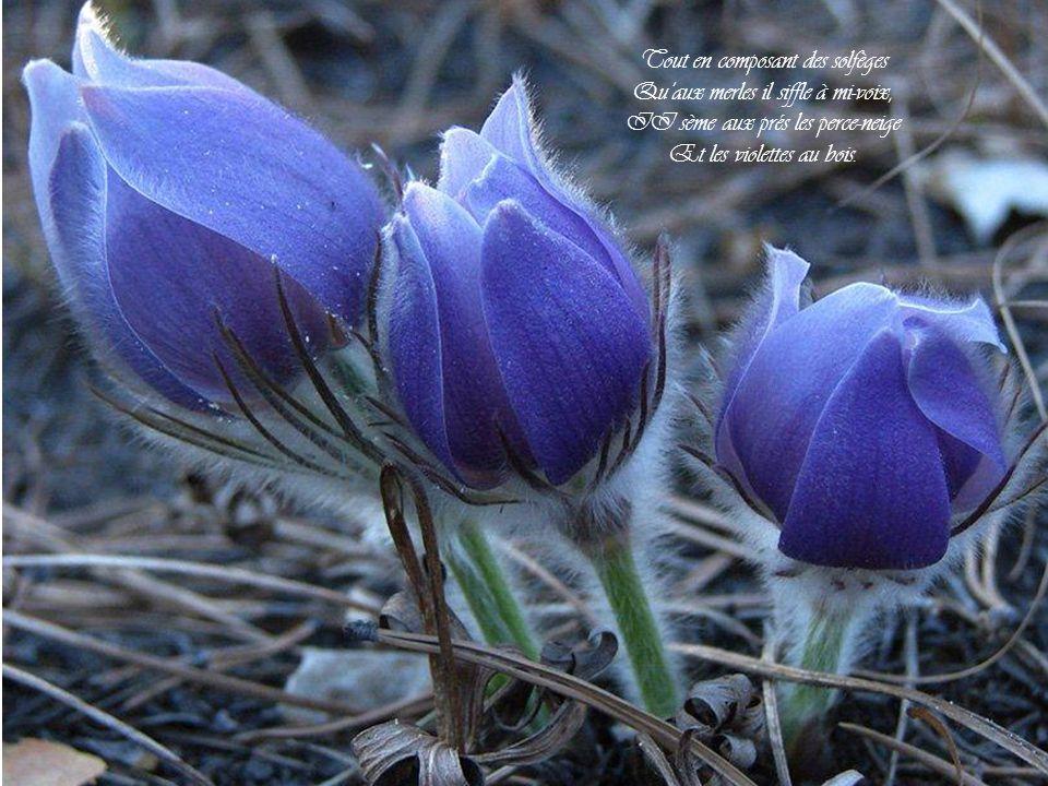 Tout en composant des solfèges Quaux merles il siffle à mi-voix, II sème aux prés les perce-neige Et les violettes au bois.