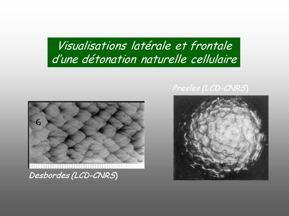 Visualisations latérale et frontale dune détonation naturelle cellulaire Desbordes (LCD-CNRS) Presles (LCD-CNRS)