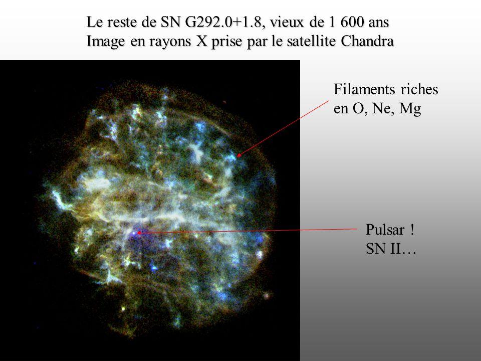 Le reste de SN G292.0+1.8, vieux de 1 600 ans Image en rayons X prise par le satellite Chandra Filaments riches en O, Ne, Mg Pulsar ! SN II…