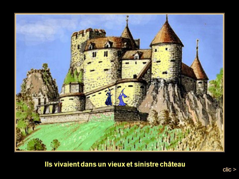 clic > Il était une fois, au pays des sorciers et des sorcières, un roi et une reine qui sennuyaient.