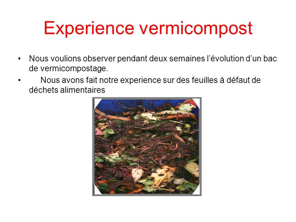 Experience vermicompost Nous voulions observer pendant deux semaines lévolution dun bac de vermicompostage. Nous avons fait notre experience sur des f