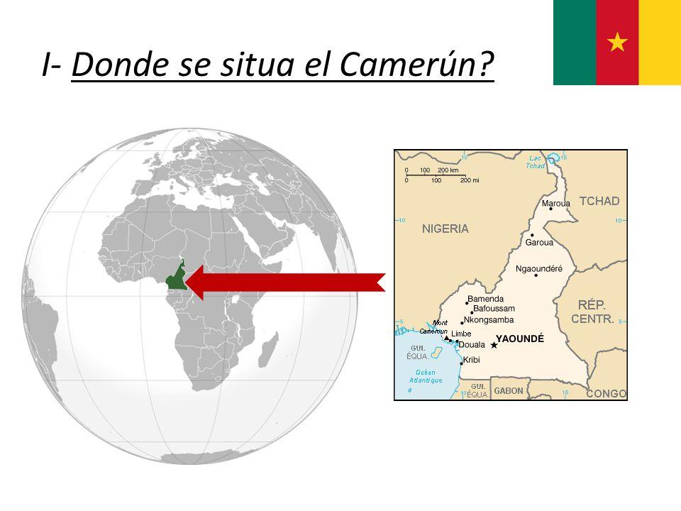 I- Donde se situa el Camerún?
