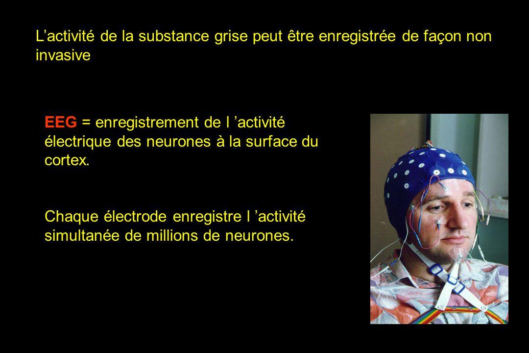 EEG = enregistrement de l activité électrique des neurones à la surface du cortex. Chaque électrode enregistre l activité simultanée de millions de ne