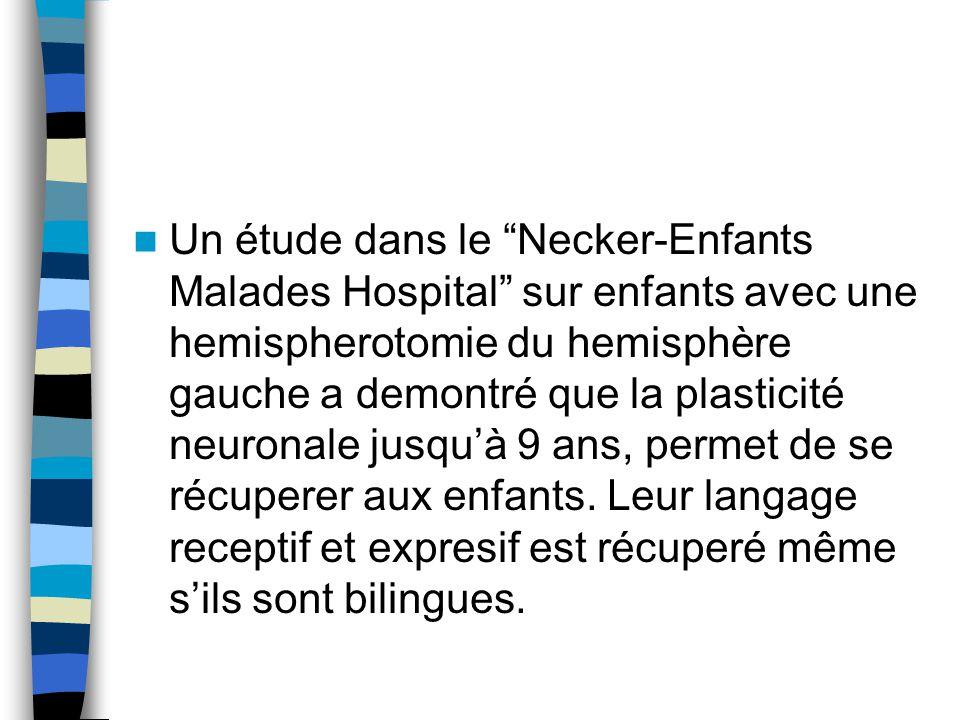 Un étude dans le Necker-Enfants Malades Hospital sur enfants avec une hemispherotomie du hemisphère gauche a demontré que la plasticité neuronale jusquà 9 ans, permet de se récuperer aux enfants.