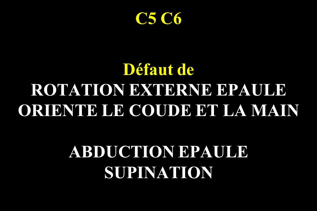 C5 C6 Défaut de ROTATION EXTERNE EPAULE ORIENTE LE COUDE ET LA MAIN ABDUCTION EPAULE SUPINATION