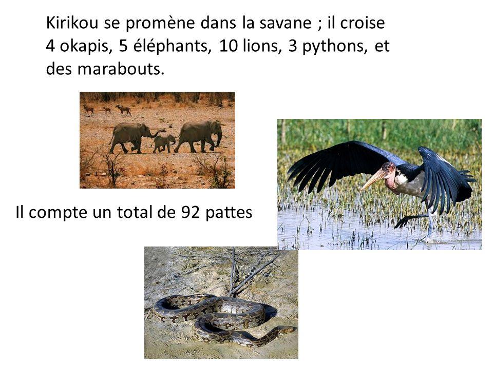 Kirikou se promène dans la savane ; il croise 4 okapis, 5 éléphants, 10 lions, 3 pythons, et des marabouts.