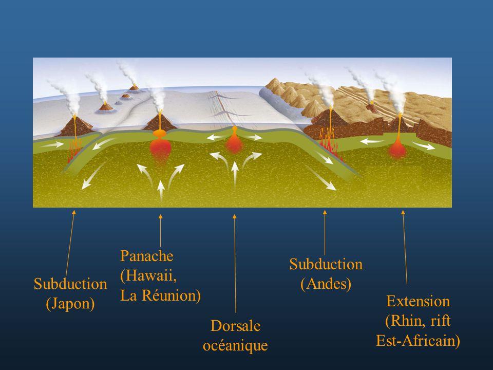Dorsale océanique Subduction (Andes) Extension (Rhin, rift Est-Africain) Panache (Hawaii, La Réunion) Subduction (Japon)