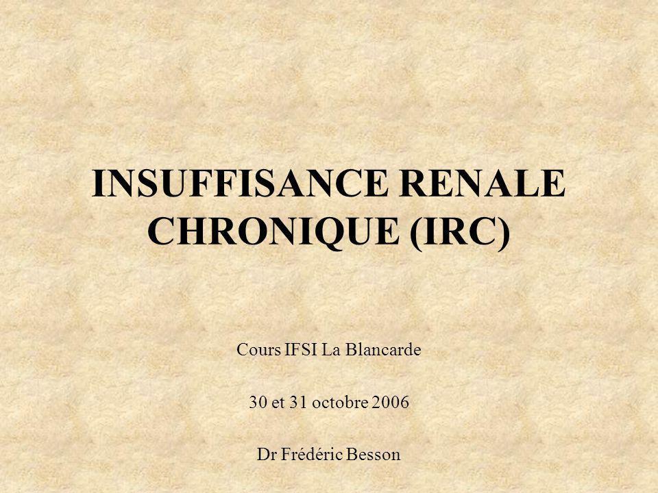 INSUFFISANCE RENALE CHRONIQUE (IRC) Cours IFSI La Blancarde 30 et 31 octobre 2006 Dr Frédéric Besson