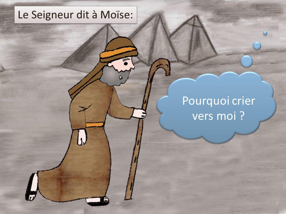 Pourquoi crier vers moi ? Le Seigneur dit à Moïse: