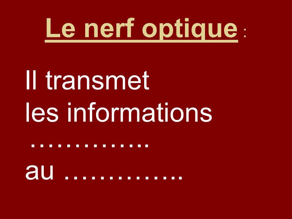 Le nerf optique : Il transmet les informations ………….. au …………..