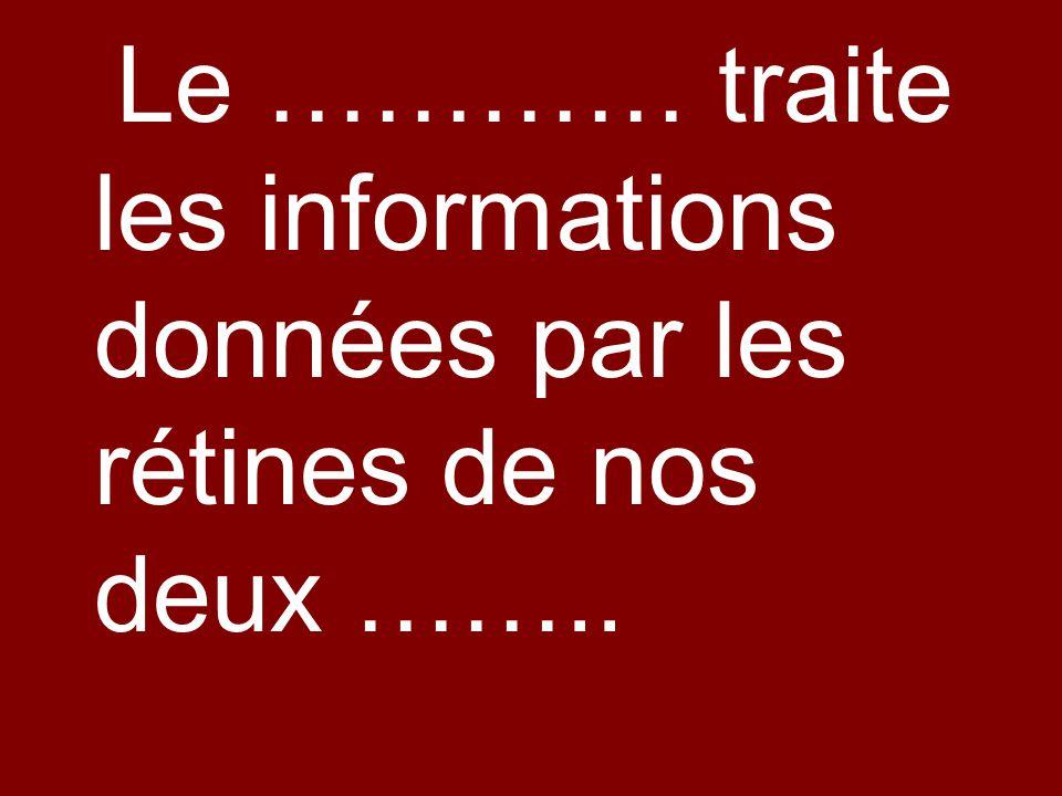 Le ………… traite les informations données par les rétines de nos deux ……..