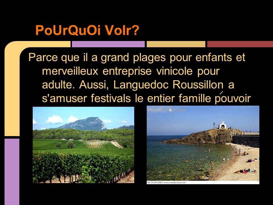 - http://us.franceguide.com/destinations/france/regions/laguedoc- roussillon/home.html?nodelD=180 -http://en.sunfrance.com/made in languedoc roussillon/famous -http://www.tittudorancea.org/z/languedoc_roussillon.htm -Lonely Planet Languedoc Roussillon (Regional Travel Guide) -http://www.domainewineshippers.com.au/french-portfolio/michel-laroche -Vos vacances en Languedoc-Roussillon, Sud de France Video Bibliographie