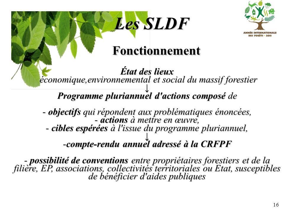 16 Les SLDF Fonctionnement Fonctionnement État des lieux économique,environnemental et social du massif forestier économique,environnemental et social