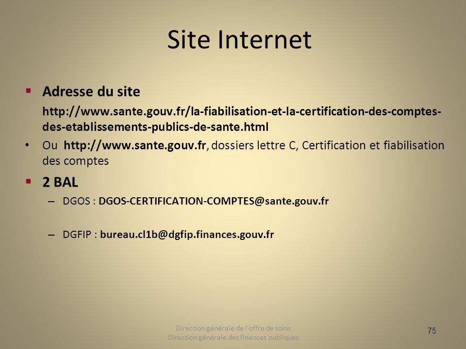 75 Site Internet Adresse du site http://www.sante.gouv.fr/la-fiabilisation-et-la-certification-des-comptes- des-etablissements-publics-de-sante.html O