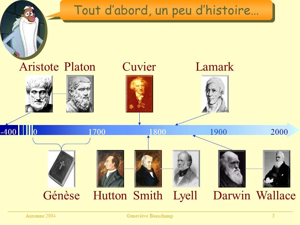 Automne 2004Geneviève Beauchamp3 Tout dabord, un peu dhistoire… Génèse -40001800190020001700 AristotePlatonCuvier HuttonLyellSmith Lamark DarwinWallac